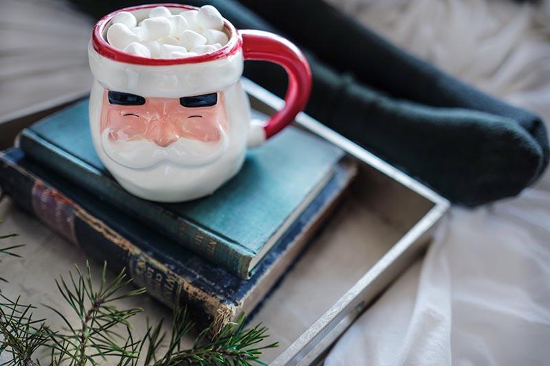 main image for blog post 'EMC Christmas Reads 2018'