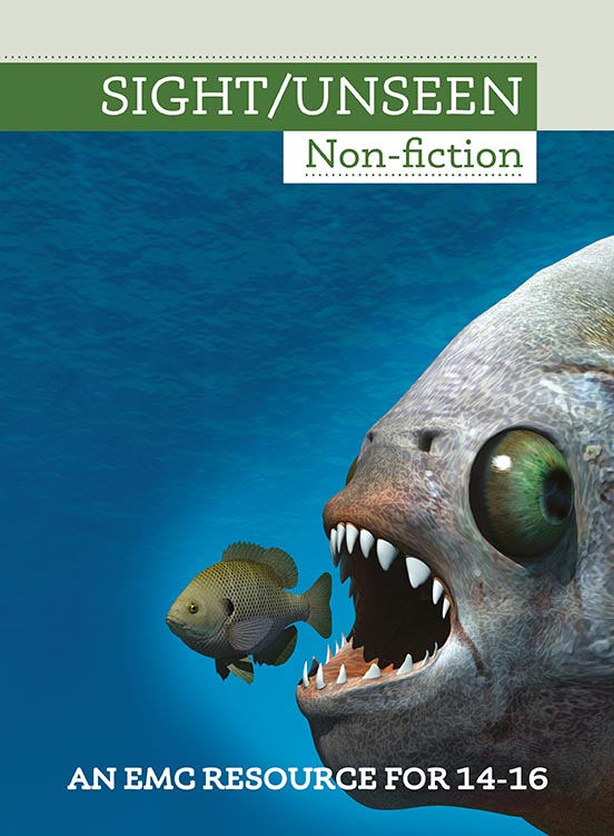 Cover image for Sight/Unseen Non-fiction (Print)